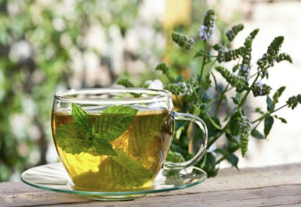 Чай из липы польза и вред для женщин thumbnail